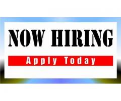 Job Hiring ! Office Staff / OJT/HR Staff/ Receptionist (Direct)